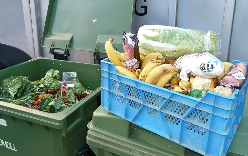 20 to 50 percent of the food we buy ends up being wasted