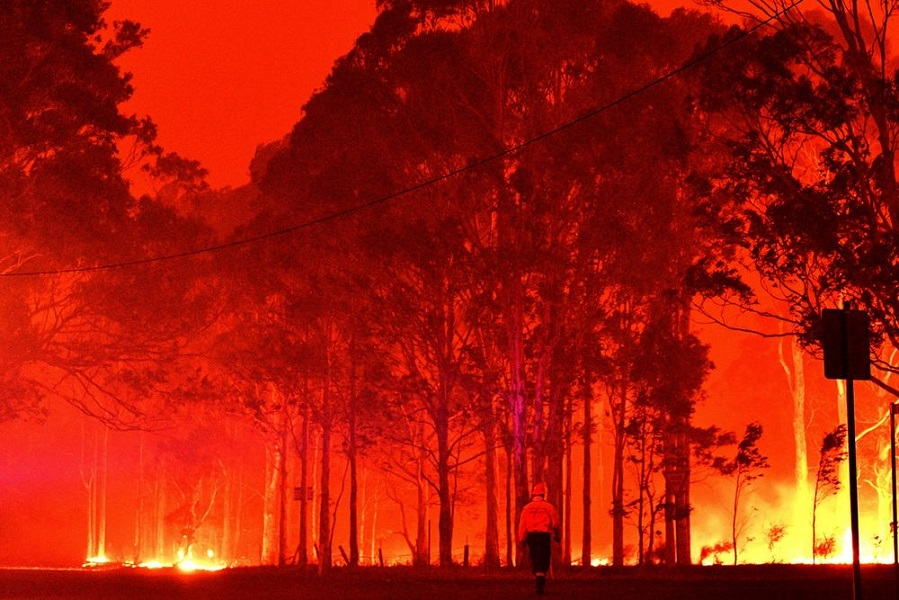Wildfires in Australia have caused considerable damage